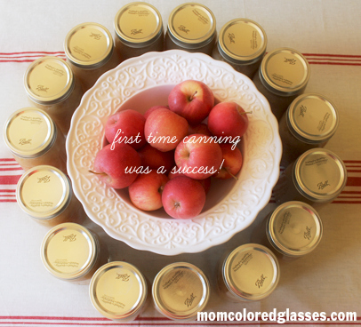 can homemade applesauce