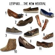 Leopard Print Shoes.  Do you own any yet?