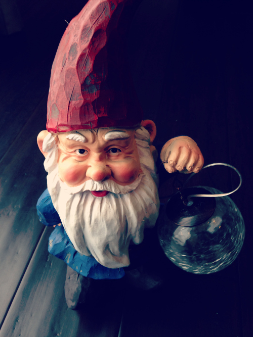 gnome1